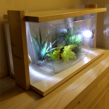 aquarium design meubles accessoires d 39 aquarium. Black Bedroom Furniture Sets. Home Design Ideas