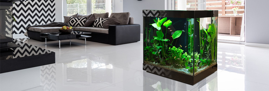 o acheter ou vendre un aquarium design. Black Bedroom Furniture Sets. Home Design Ideas